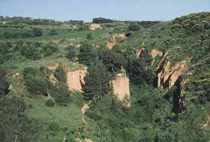 Panonàmica del Castell de Fang