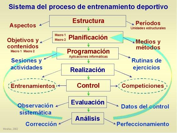 Sistema proceso entrenamiento deportivo